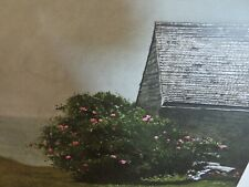 Vintage 1978 James Wyeth Island Roses Lithograph Print BEAUTIFUL COLORS