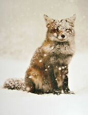 Christmas Greeting Card Snow Red Fox Wish upon a Snowflake New Unused