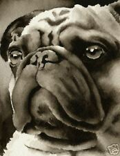 Pug Art Print Sepia Watercolor Painting 11 x 14 by Artist DJR