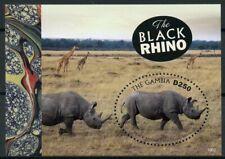 Gambia 2019 MNH Black Rhino Rhinoceros 1v S/S Fauna Rhinos Wild Animals Stamps