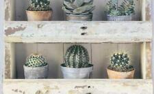 7373-07 Cactus Wallpaper Retro Be Inspired Range Wallpaper Erismann Book shelf