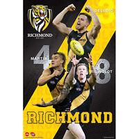 AFL - Richmond Tigers Players POSTER 61x91cm NEW Deledio Martin Riewoldt footy