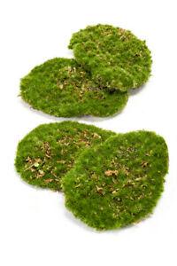 künstliches Moos, Dekomoos, Moos Platten 4 Stück im Beutel 11x14cm grün Emerald