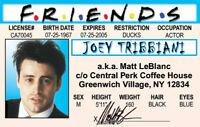 Joey of the FRIENDS Matt leBlanc .. plastic ID card Drivers License -