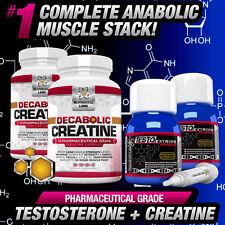 2 mese ciclo testo anabolizzanti + decabolic Creatina-forte non steroidi / HGH stack