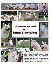 30 Annees Au Cote Du Berger Blanc Suisse, Paperback by Vigne, Maryline; Grous...