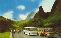 Maui's Island Tours Hawaii's Maui Iao Needle Color Postcard Unposted 1951