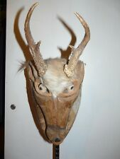 ANTLERED DEER MASK- HUAMELUHA OAXACA, MEXICO
