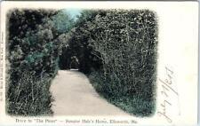 ELLSWORTH, Maine ME  Handcolored SENATOR HALE'S HOME Drive to The Pines Postcard