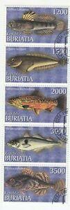 Buriatia; 2000 Fish Strip Of 5, CTO, 5 Vals, Myoxocephalus, Gobius Linnaeus