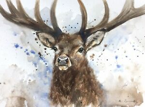 NEW ORIGINAL WATERCOLOUR PAINTING  'RED STAG'  WILDLIFE