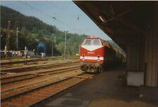 Foto BR 219 Bf Probstzella 1994 10x15cm V1928f