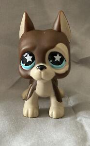 Littlest Pet Shop Brown Great Dane Dog with Star Eyes #817