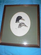 Vintage Duck Print Etching by Al Dornisch