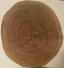 Dekoratives Hirnholz Furnier Eiche Intasien Furnierarbeiten Echtholz ca. 77 cm