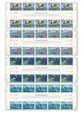 SGV8503PAS Water Sports 4 strips