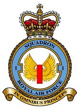 RAF 1 SQUADRON BADGE ON METAL SIGN 5 x 7 INCHES. FITS STANDARD FRAME. ALUMINIUM