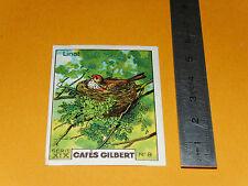 CHROMO 1936 CAFES GILBERT OISEAUX BIRDS LINOT