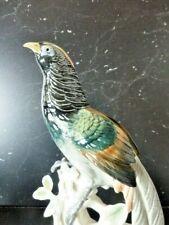 Exceptionnel faisan de Lady Amherst porcelaine Karl Ens