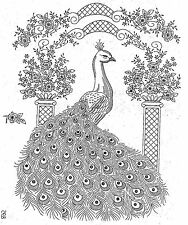 Peacock for Picture or Bedspread 895 Repro Hand Embroidery iron on Transfer