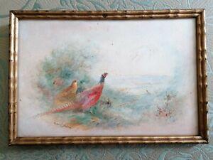James Stinton Signed Original Watercolour Pheasants - Royal Worcester Artist