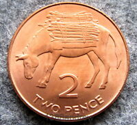 SAINT HELENA & ASCENSION 2006 2 PENCE, DONKEY WITH FIREWOOD, UNC