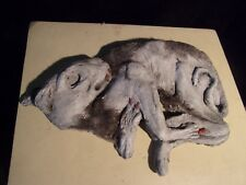 MUMMIFIED WITCH'S CAT - WALLED UP - GAFF 18th CENTURY