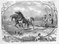AMERICAN FARM AGRICULTURE FARMER PLOUGHING FIELD HORSES