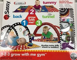 Sassy 1-2-3 Grow with me Activity Gym- BRAND NEW
