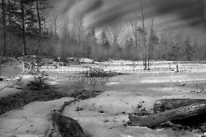 Frozen Creek Black and White Fine Art Print - 11x14 unframed
