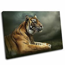 Tiger Canvas Animal Wall Art Print Framed Picture 17