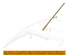 Ford OEM Antenna Mast 98BZ-18A886-AA Factory 2000-2007 Focus Models