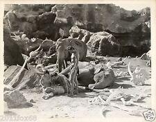 rara edizione photo rare lex barker tarzan fotografia originale 26 x 20 anni 50