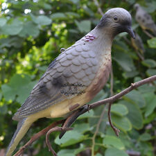 Realistic Dove Decoy Wood Pigeon Bird Hunting Decoys Garden Decorative