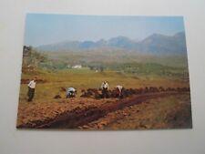 SUTHERLAND, Peat-Workings below Quinag - Vintage  Postcard §B2745