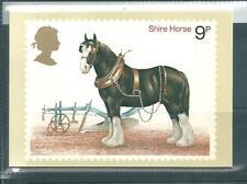 GB - PHQ CARDS -1978 - HORSES  - BACK - FDI/SHS - COMP  SET USED