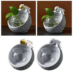 Clear Glas Plant Stand Glass Vase Tabletop Planter Hydroponic Plant Stand