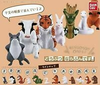 (Capsule toy) Animal line up I. [all 12 sets (Full comp)]