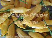 🔥 🌶️ Lemon drop gelber Chili Zitronen-Aroma 10 frische Samen Balkon Kübel