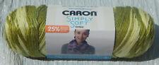 Caron Simply Soft Yarn Ombre in Avocado 5oz Skein NIP Non-smoking Home