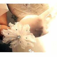 Women's Off-White Sheer Short Bridal Wedding Gloves (Size M)