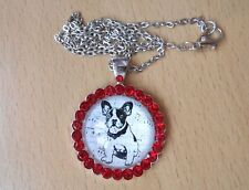 French Bulldog Necklace & Pendant Glass Metal Chain Silver Tone Dog Red Gemstone