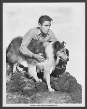 8x10 Photo~ THE SON OF LASSIE ~1945 ~Actor Peter Lawford ~Collie dog