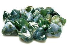 TUMBLED - (1) LG/XL MOSS AGATE Crystal w/Description Card - Healing Stone Reiki