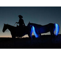 Horse Tail Light USB LED Crupper Harness Pony Tail Decorative Lamp Safety Lights