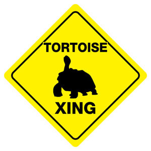 TORTOISE CROSSING Turtle Funny Novelty Xing Sign