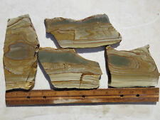 783  PICTURE JASPER SLABS GREAT FOR CABS OR ROCK PAINTINGS. FROM OLD ROCK SHOP