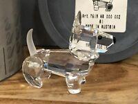 Swarovski Figur Hund / Terrier 5,2 cm. Mit Ovp & Zertifikat. Top Zustand