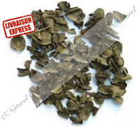 Feuille de Jujubier ou feuille de Sidr BIO 50g Jujube Leaf, Hoja de Jujube