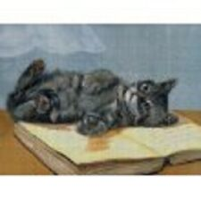 """14 Count Charted Cross Stitch Kit""""Grey Cat Laying on Book"""" 70x55cm"""